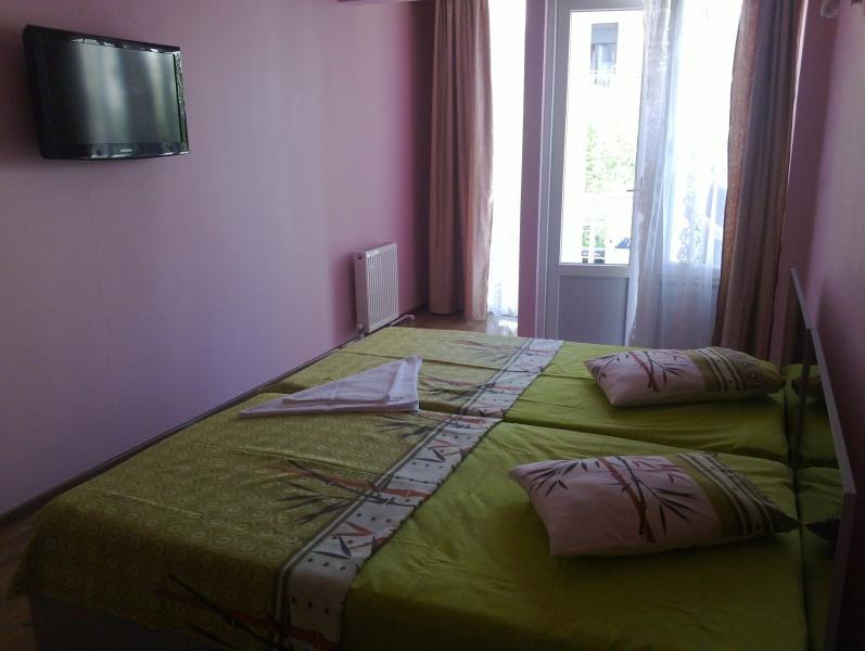 Hotel Dolphin1302