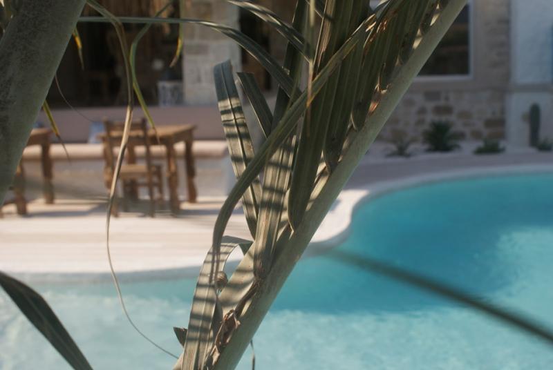 Alaçatı La Vela Butik Hotel1460