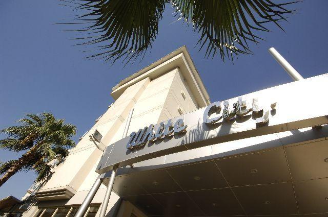 White City Beach Hotel8315