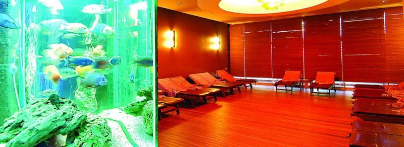 ALAİYE RESORT & SPA HOTEL9957